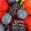 Fresh berries — Stock Photo #8686954