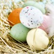 Easter chocolate eggs in the nest — Stock Photo #8687012