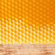 Fresh honey in comb — 图库照片 #8696237