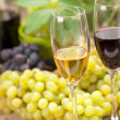 Wine sampling — Stockfoto
