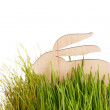 Stock Photo: Easter rabbit on grass