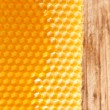 Fresh honey in comb — Foto Stock