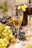 Wine sampling — Stock Photo