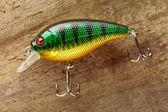 Рыбалка приманки — Стоковое фото