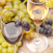 Wine sampling — Stock Photo #8780338