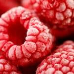 Frozen raspberries — Stock Photo