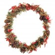 Christmas garland — Stock Photo #8807104