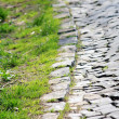 Stock Photo: Cobblestone and grass