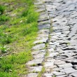Cobblestone and grass - Stock Photo