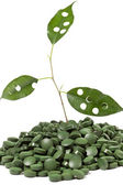 Spirulina tablets and green plant — Stock Photo
