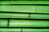 Bamboo. — Stock Photo