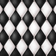Black and white leather — Stock Photo #8838582