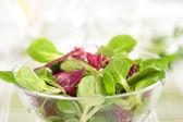 野菜サラダ — ストック写真
