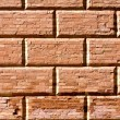 Background of brick wall texture — Stock Photo #10500809