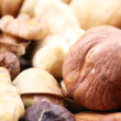 Hazelnut closeup - Stock Photo