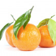 Tangerines with leafs - Stock Photo