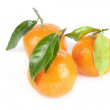 Mandarins with leafs - Stock Photo