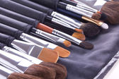 Make-up brushes in leather case — Stock Photo