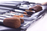 Set of make-up brushes in case — Stock Photo