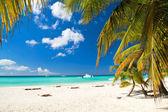 Paraíso del caribe — Foto de Stock