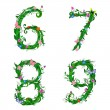 Font numbers foliage insect - Stock Vector
