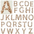 Vector de stock : Alphabet