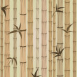 Royalty-Free Stock Vector Image: Background of bamboo