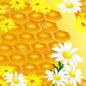 Design of honeycomb and flowers Illustration contains a transpar — Stock Vector