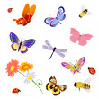 Royalty-Free Stock Vector Image: Butterfly insects bee ladybug