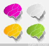 Human brain, realistic design elements — Stock Vector