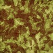 Camouflage background abstract on canvas. — Stock Photo