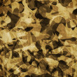 Camouflage abstract background. - Stock Photo