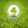 Light bulb in grass. Concept of green energy. — Stockfoto