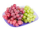 Grappes de raisins rouges et blancs sur la plaque d'immatriculation bleue isolé sur blanc — Photo