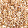 Pearl barley food ingredient background — Stock Photo