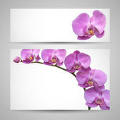 Orchid flower vector template — Stock Vector