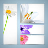 Flower Brochure Template. Background Design — Vetorial Stock