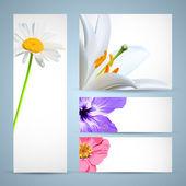 Modelo de folheto de flor. projeto de plano de fundo — Vetorial Stock