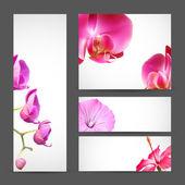Flower Orchid brochure template — Stock Vector