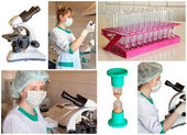 Set of images on a medical subject — Stock Photo
