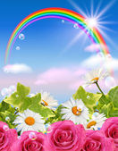Rainbow and flowers — Stock Photo