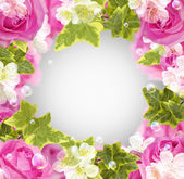 Róże i białe kwiaty — Zdjęcie stockowe