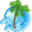 Palm tree - Stock Vector