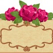Frame and flowers - Imagen vectorial