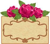 Frame en bloemen — Stockvector