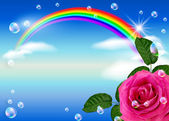 Rose and rainbow — Stock Photo