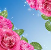 Roses and stars — Stock Photo