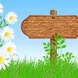 Signboard on the meadow with daisies — Stock Vector