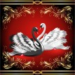 White and black swan on red background — Stock Vector