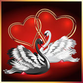 White and black swan on red background with hearts — Stock Vector